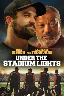 Under the Stadium Lights